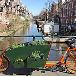 WorkCycles Bloemenbak